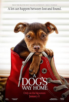Sinopsis Film A Dog's Way Home (2019)