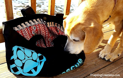 Sophie sniffing out the RESCUE Tote Bag from #PawZaar - Global Style for Pet Lovers! #rescueddogs #adoptdontshop #animalwelfare #rescue #LapdogCreations ©Lapdog Creations