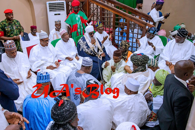 Shehu Sani Reacts After Nigerians Criticized President Buhari For Attending Wedding Party In Kano