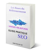 ebook Guide Pratique Des Bases SEO