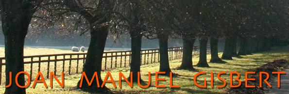 http://www.joanmanuelgisbert.com/