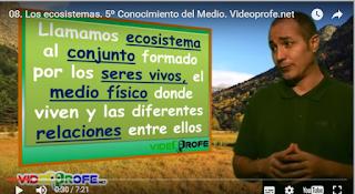 VIDEOPROFE. RECURSOS DE PRIMARIA EN VÍDEO