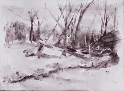 When a Tree Falls in the Wood - Value Study