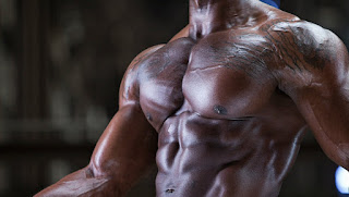 5 Chest Exercise For Building Muscle At Gym