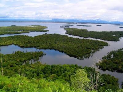 http://www.wisatakalimantan.com/2016/06/danau-sentarum-kalimantan-barat.html