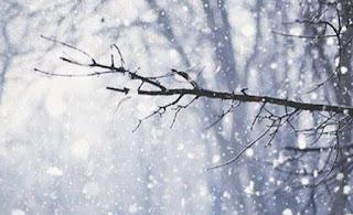 Δεν θα πιστεύετε σε ποια πόλη χιονίζει αυτή την ώρα [photos+video]