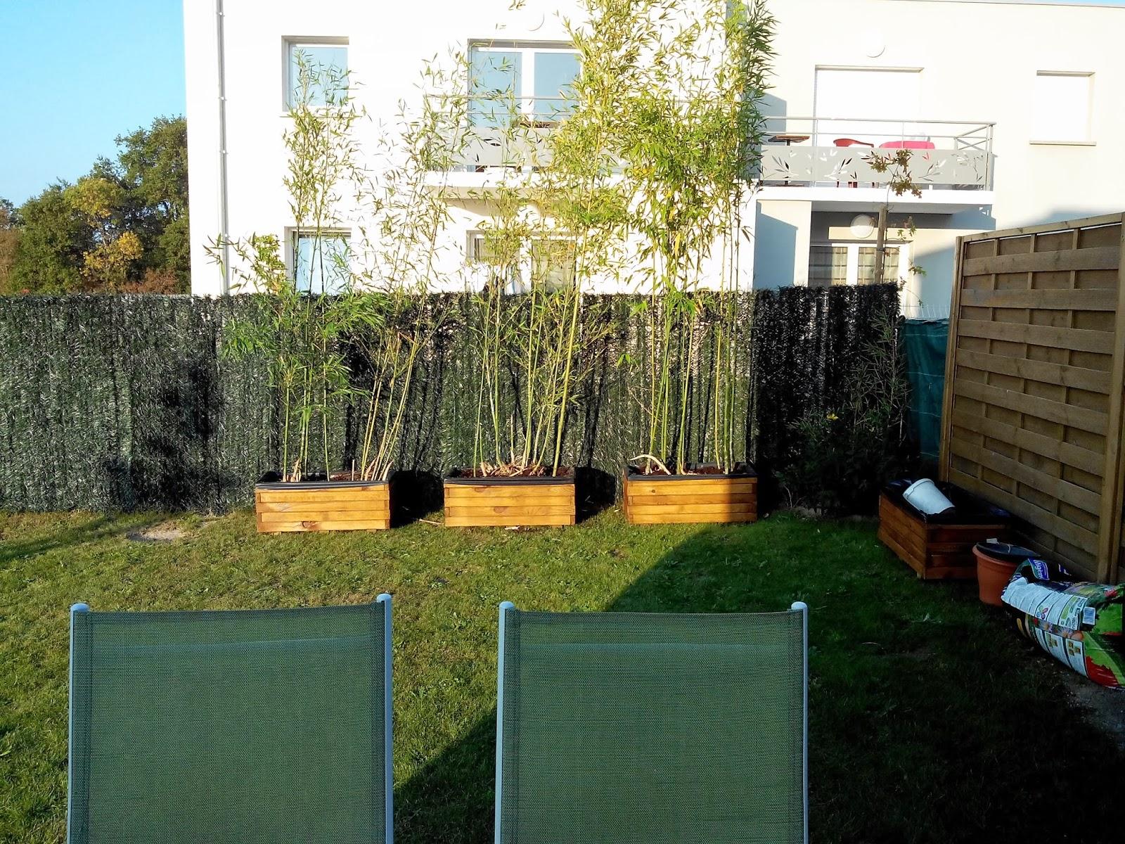 jardin, bambous, bullelodie