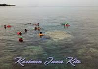 snorkeling di pulau kecil karimunjawa