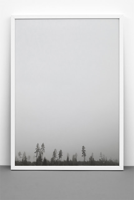 grey, black and white, forest, photography, print, home decor, design,