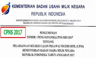 formasi dan persyaratan CPNS 2017 Kementrian BUMN
