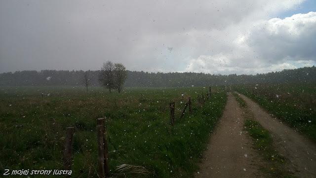 śnieg w maju w Polsce