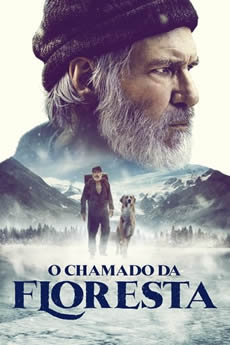 Capa O Chamado da Floresta Torrent – HDCAM 720p Dublado Download