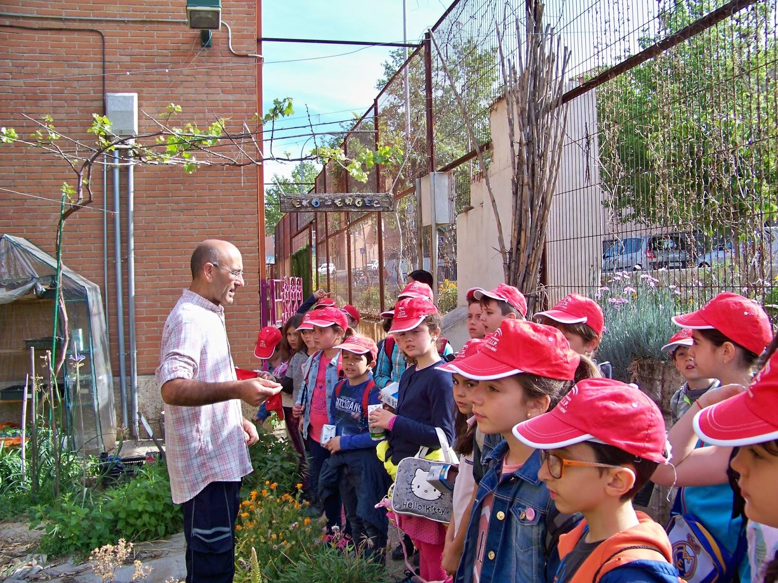 El jard n the garden 2 ciclo visita al ies zaidin for Jardin de la reina granada