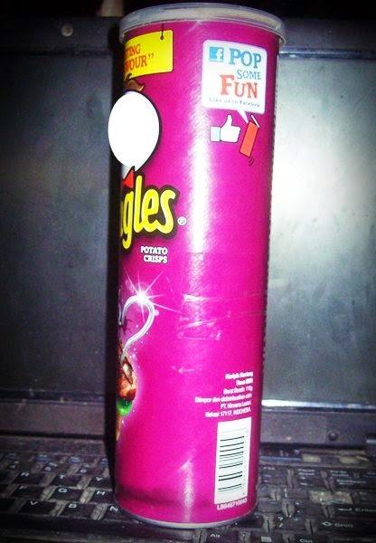 Recycle] DIY Vas Bunga dari Kaleng Pringles | She Nisa