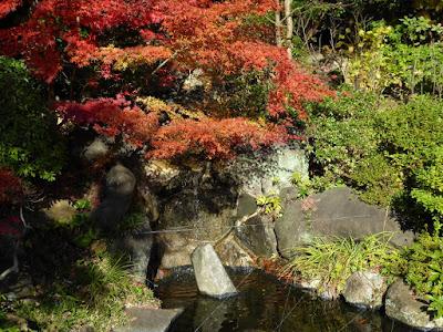 野崎観音・慈眼寺(じげんじ)の紅葉 池 滝