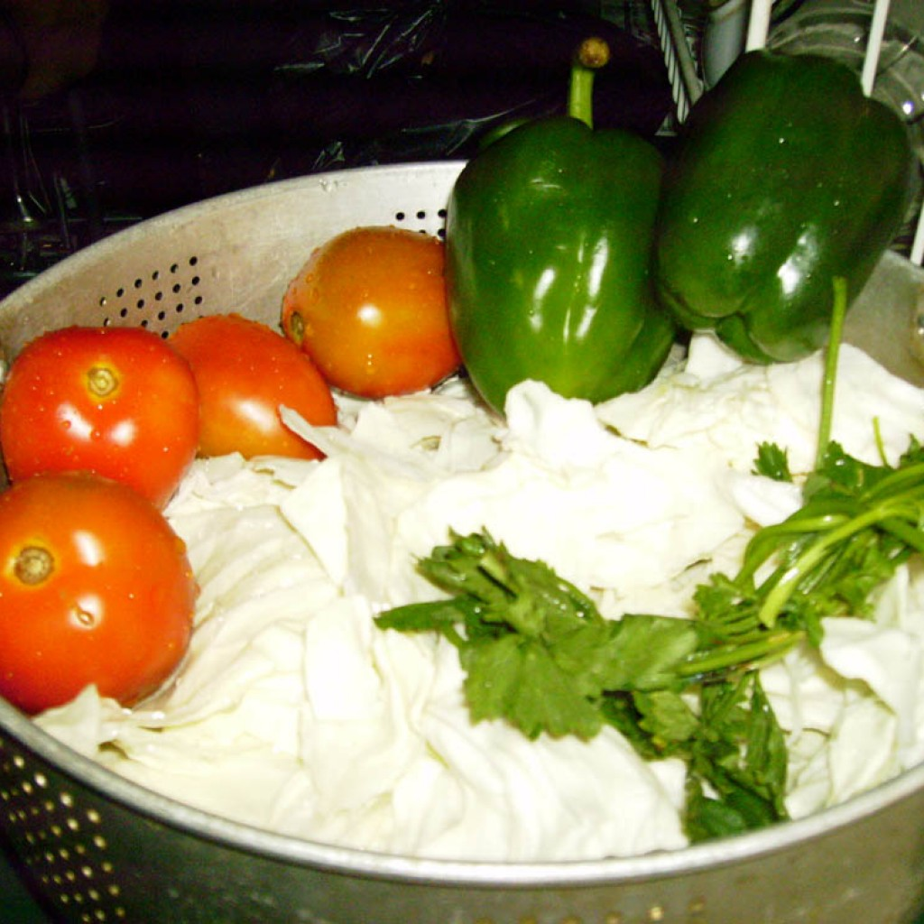 Ceritaku Menjalankan Diet Sayuran, 5 Hari Turun 3 Kg