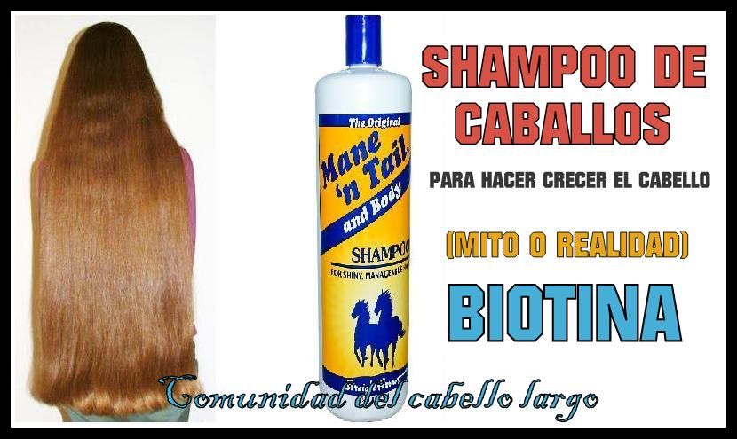 Comunidad del cabello largo: Shampoo de Caballos ¿Hace