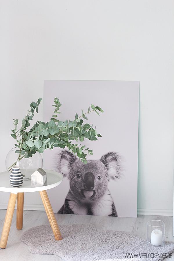 Poster Koala Wohnzimmer Ideen