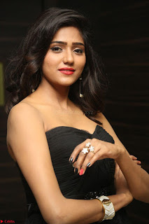 Shalu Chourasiya in spicy Sleeveless Strapless Black Top at O Pilla Nee Valla Movie Audio Launch Feb 2017 126.JPG