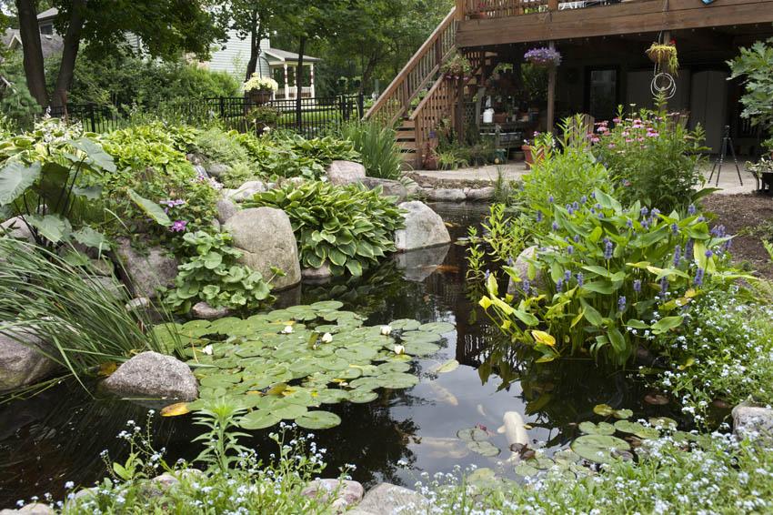 Aquascape Your Landscape Designing Your Dream Pond