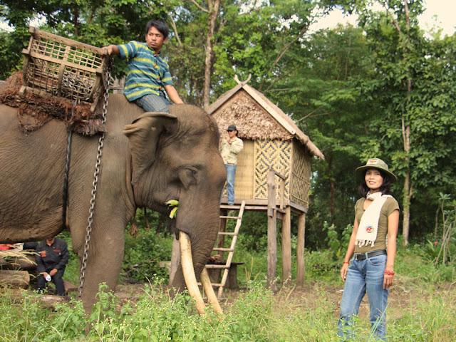 Bak Maï l'éléphant et Chnda Clais, Présidente d'Aïravata (1)