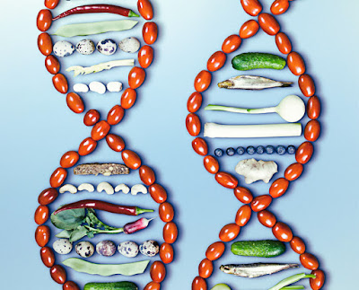 DNA prawdę powie – badania genetyczne drogą do zdrowia i dobrej kondycji