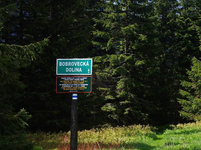 Początek zejścia na Słowację na Bobrowieckiej Przełęczy