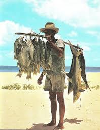 Alat tangkap ikan
