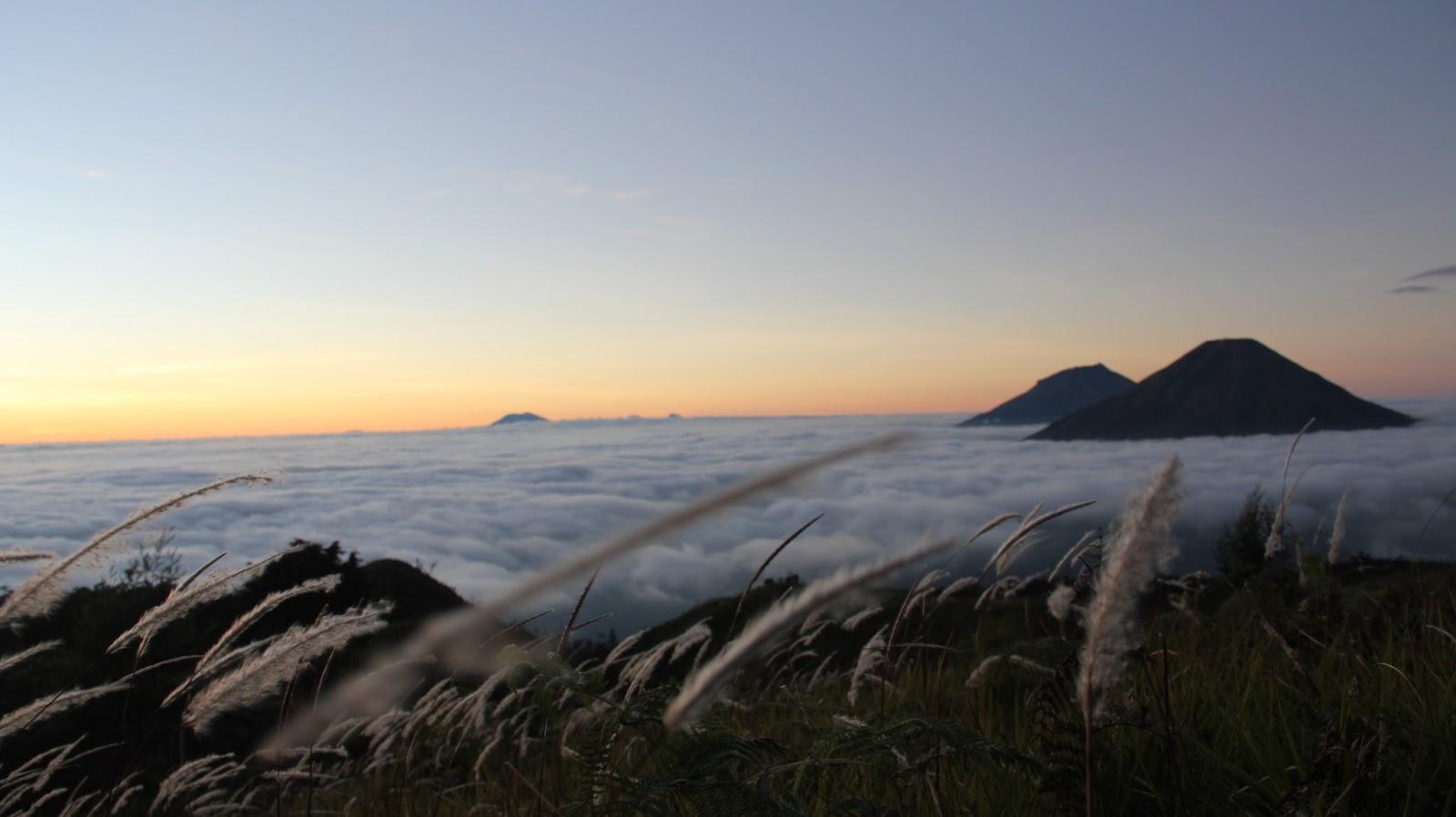 Tempat Wisata Dieng Wonosobo, Wisata Alam dan Budaya
