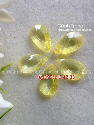 Nguyen lieu hoa pha le o Bui Thi Xuan