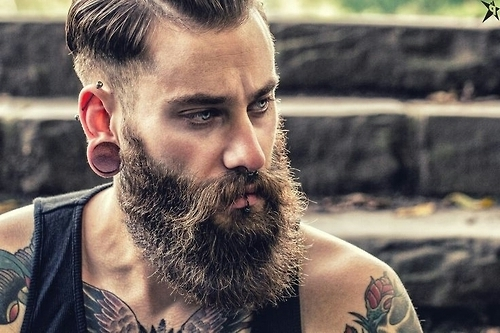 Beard Styles For Men With Short Hair Perfect Styles