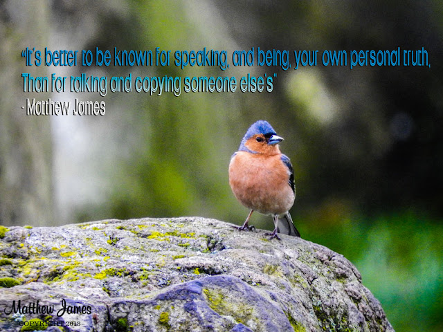 """""""It's better to be known for speaking, and being, your own personal truth. Than for talking and copying someone else's"""" - Matthew James"""