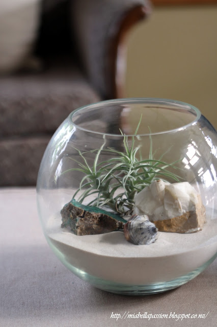 Beach Lovers Terrarium
