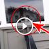 Хозяева дома не верили тому, что рассказывал им почтальон… Но потом он снял это видео!