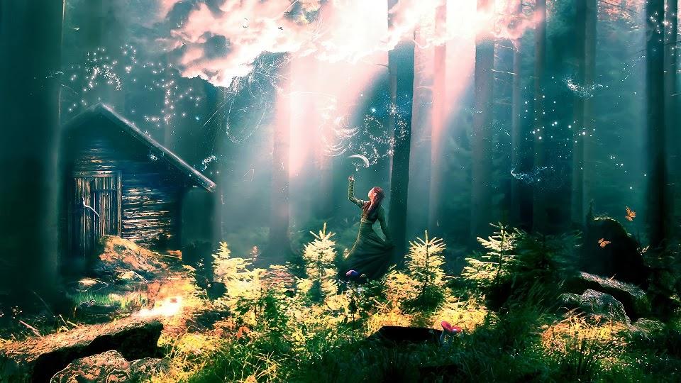 Poster bosco incantato u pixers viviamo per il cambiamento