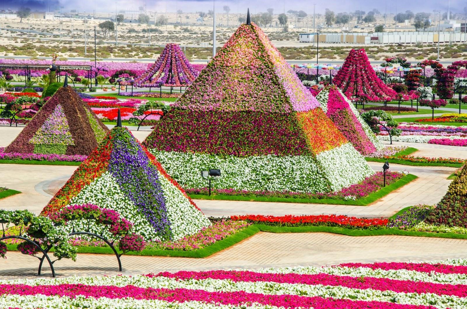 Wallpaper Wallpaper Dubai Miracle Garden