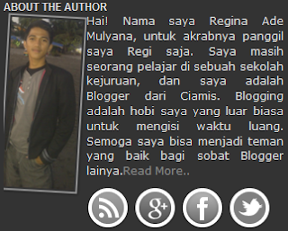Widget About The Author Box