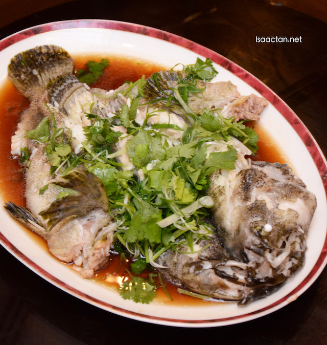 "Steamed Grouper ""Hong Kong"" Style"
