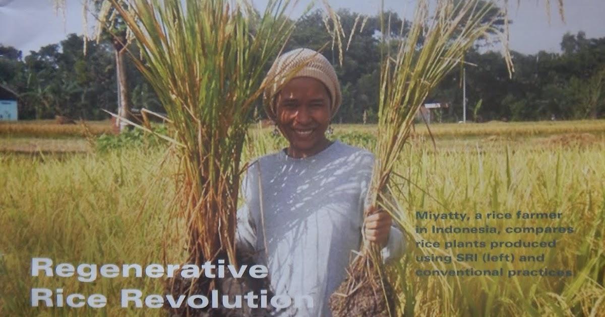 Harmony Valley Farm: News Reports from The Organic & Non-GMO