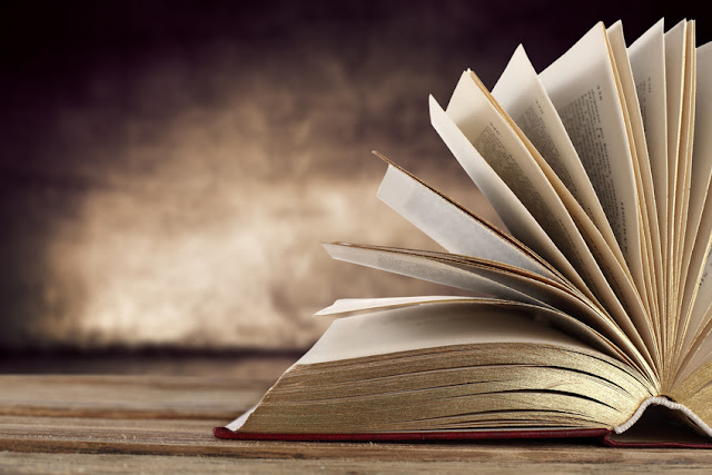 De libro y lecturas. Balance personal a mitad de año