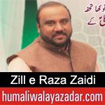 https://www.humaliwalyazadar.com/2019/02/zill-e-raza-zaidi-manqabat-2019.html
