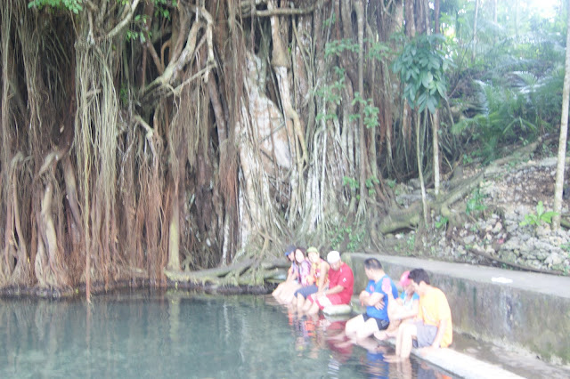 Balete tree in Lazi Siquijor