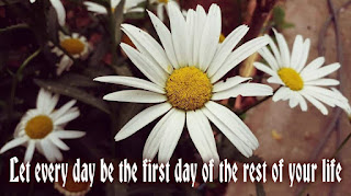 Let every day be the first day of the rest of your life, moving on quotes, motivational texts
