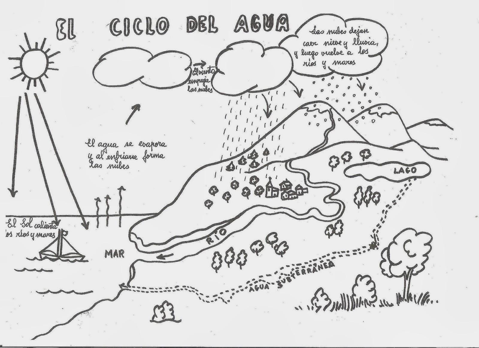 El Ciclo del Agua para colorear ~ Dibujos para Niños