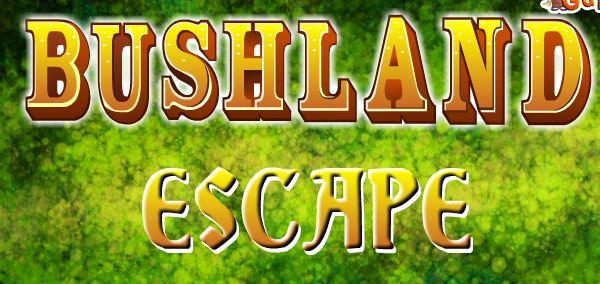 EightGames Bushland Escape Walkthrough