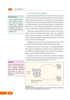 10. Sınıf Biyoloji Ders Kitabı Cevapları Berkay Yayınları Sayfa 16
