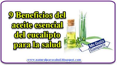 9 Beneficios del aceite esencial del eucalipto para la salud