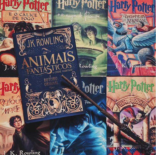 Animais Fantásticos e onde Habitam livro tumblr