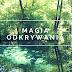 Magia odkrywania, czyli pomysł na wycieczkę - park Mikrokosmos i Niebieskie Źródła