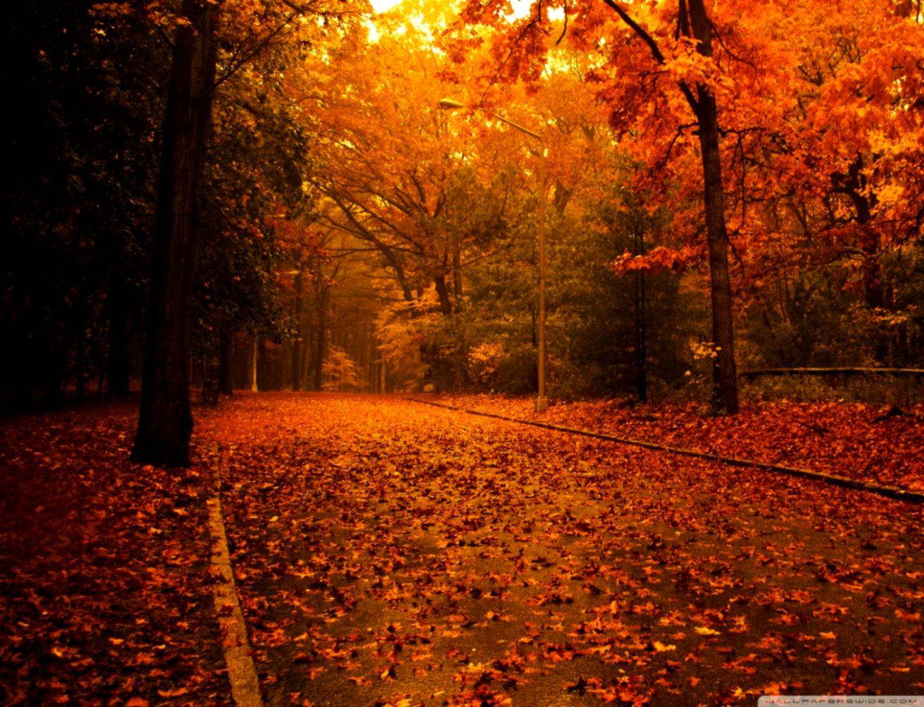 Fall Scenes Wallpaper Top Wallpapers